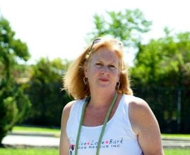 APP FEATURED MEMBER – SUE JOHNSON!