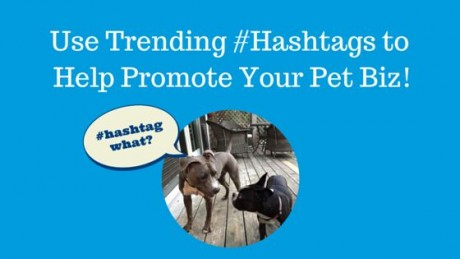 #Hashtags + Trending = More Visibility