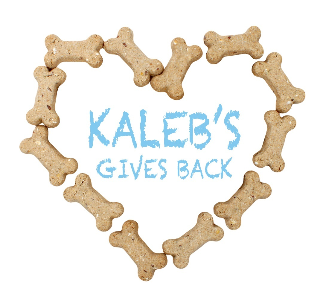 Kaleb_gives_back-3