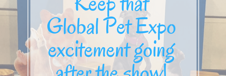Keep the momentum after Global Pet Expo!